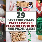 DIY Christmas Party Favors & Goodie Bag Ideas - Food & Non-Food Ideas for Kids & Adults
