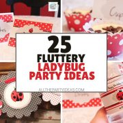 How to Plan a Ladybug Party: DIY Ideas
