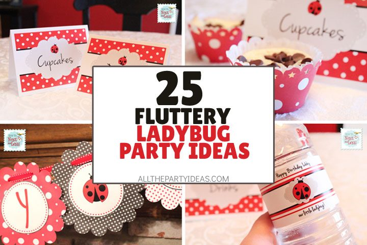 fluttery ladybug party ideas