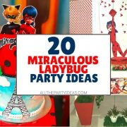 How to Plan a Miraculous Ladybug Party: DIY Ideas