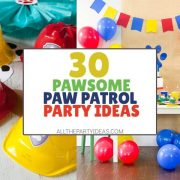 How to Plan a Paw Patrol Party: DIY Ideas