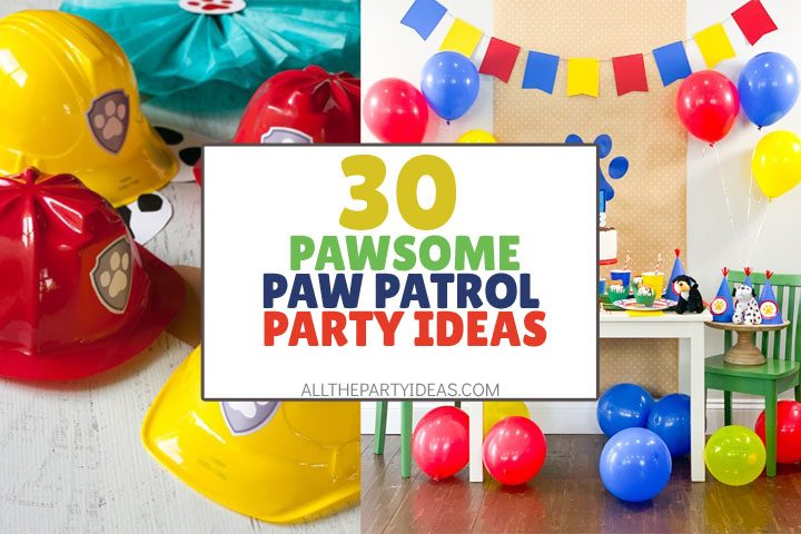 pawsome paw patrol party ideas